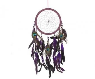 Unenäopüüdja lilla paabulind